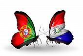 Two Butterflies With Flags On Wings As Symbol Of Relations Portugal And Paraguay