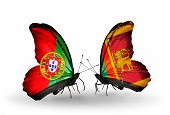 Two Butterflies With Flags On Wings As Symbol Of Relations Portugal And Sri Lanka