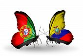 Two Butterflies With Flags On Wings As Symbol Of Relations Portugal And Ecuador