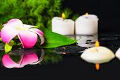 Beautiful Spa Concept Of Green Leaf Calla Lily, Plumeria With Drops And Candles On Zen Stones