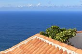 View Of Atlantic Over a Tiled Roof