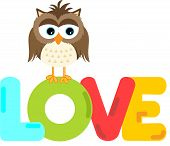 Cute owl with love word letters