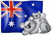 Illustration of an australian flag and koalas
