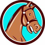 Horse Head Bridle Circle Cartoon