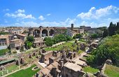 Roman Forum, as seen from the Palatine Hill