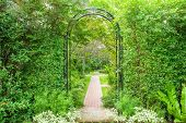 stock photo of turret arch  - Decorative arched iron gateway to a garden - JPG