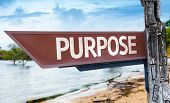 Purpose wooden sign with a lake background