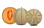 orange cantaloupe melon