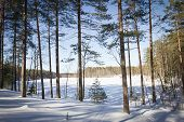 Russian Winter Lake In Ice And Snow