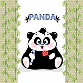 Fat Panda with candy