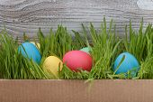 Easter Eggs In Box With Fresh Grass Over Wood Background