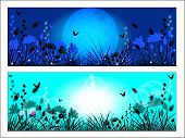 Silhouette Of Meadow Grass And Flowers On A Background Of The Sun And The Night Sky.