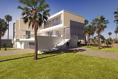 image of manicured lawn  - 3D Rendering of Modern geometric luxury tropical villa with white washed walls and a landscaped garden with lawns and palm trees - JPG