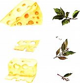 Watercolor illustration with cheese and laurel