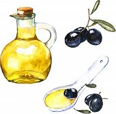 Watercolor illustration with black olives and olive oil in the bottle