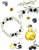 Hand drawn watercolor illustration with olives. Set of the elements. Olives, olive oil, branch and w