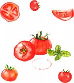 Seamless pattern with different watercolor tomatoes and basil leaves