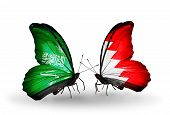 Two Butterflies With Flags On Wings As Symbol Of Relations Saudi Arabia And Bahrain
