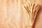 Wheat Ears Border On Burlap Background