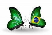 Two Butterflies With Flags On Wings As Symbol Of Relations Saudi Arabia And Brazil