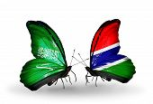 Two Butterflies With Flags On Wings As Symbol Of Relations Saudi Arabia And Gambia