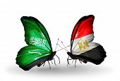 Two Butterflies With Flags On Wings As Symbol Of Relations Saudi Arabia And Egypt