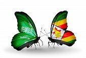 Two Butterflies With Flags On Wings As Symbol Of Relations Saudi Arabia And Zimbabwe