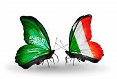 Two Butterflies With Flags On Wings As Symbol Of Relations Saudi Arabia And Ireland