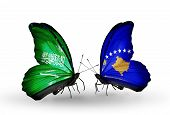 Two Butterflies With Flags On Wings As Symbol Of Relations Saudi Arabia And Kosovo