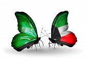 Two Butterflies With Flags On Wings As Symbol Of Relations Saudi Arabia And Kuwait