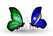 Two Butterflies With Flags On Wings As Symbol Of Relations Saudi Arabia And Marshall Islands