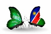 Two Butterflies With Flags On Wings As Symbol Of Relations Saudi Arabia And Namibia