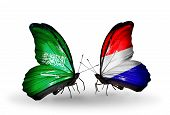 Two Butterflies With Flags On Wings As Symbol Of Relations Saudi Arabia And Holland