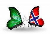 Two Butterflies With Flags On Wings As Symbol Of Relations Saudi Arabia And Norway