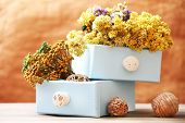 Dried flowers in chest on bright background