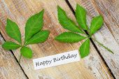 Happy Birthday card with green leaves on rustic wooden surface