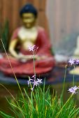 Wild Flowers In Bloom With Buddhist Statue In Background