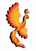stock photo of spread wings  - Vector illustration of a beautiful phoenix with spread wings - JPG