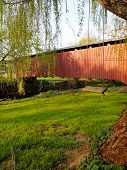pic of covered bridge  - A tree swing hangs from a willow tree near a red covered bridge over a stream in the springtime - JPG