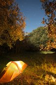 stock photo of starry  - illuminated one person tent in the woods of Etna Park under starry blue sky - JPG