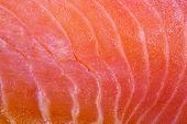 pic of redfish  - slice of salmon fullscreen - JPG