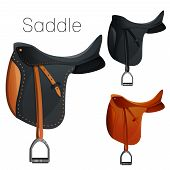 image of girth  - Set of equestrian equipment for horse - JPG