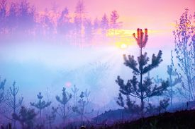 stock photo of landscapes beautiful  - Beautiful Nature Sunrise Foggy Landscape - JPG