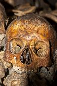 stock photo of catacombs  - A picture i took in the catacombs of paris these where assembled from older graveyards over a view centuries - JPG