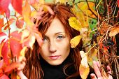 Beautiful Woman And Autumn Leaf