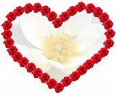 ein Herz von Rosen