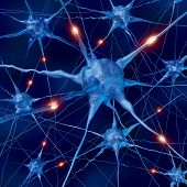stock photo of neuron  - Active neurons as brain connections within the nervous system and human mind anatomy - JPG