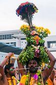 Thaipusam Devotee