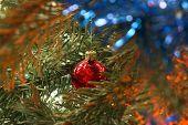 Christmas Ball On A Fir Tree