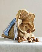 sack with hazelnuts